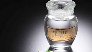 قیمت سرکه سفید فله